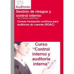xxxxxxx - Control Interno y Auditoría Interna
