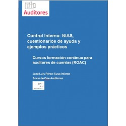 50123213 - Control Interno - NIAs, cuestionario de ayuda y ejemplos prácticos