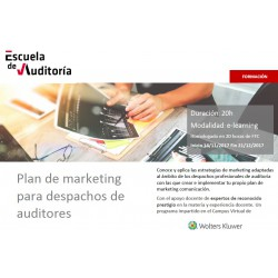 Plan de marketing para despachos de auditoria